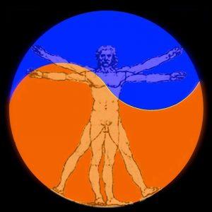 TMMVM-orangeSQblue